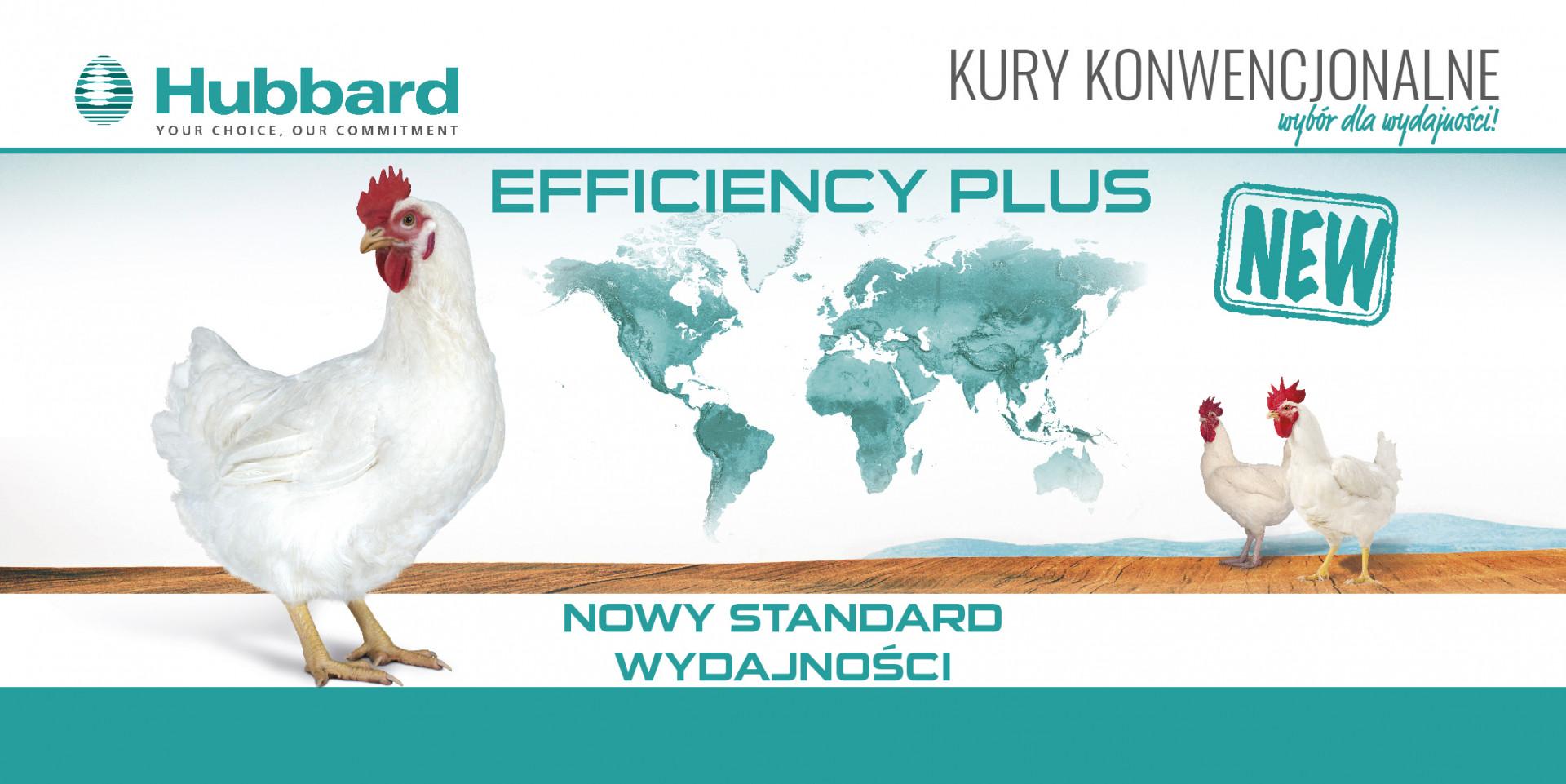 Efficency Plus