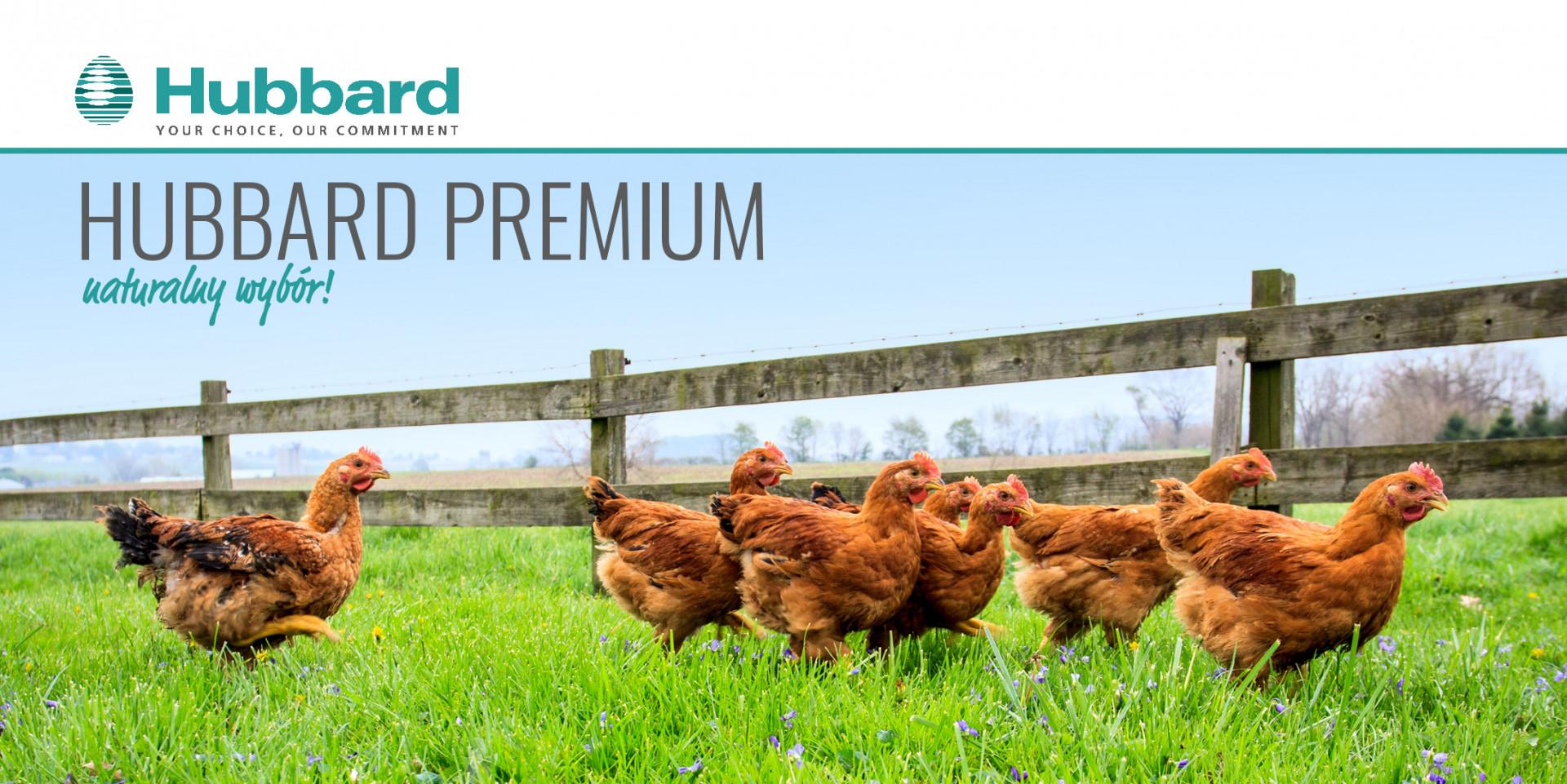 Hubbard Premium
